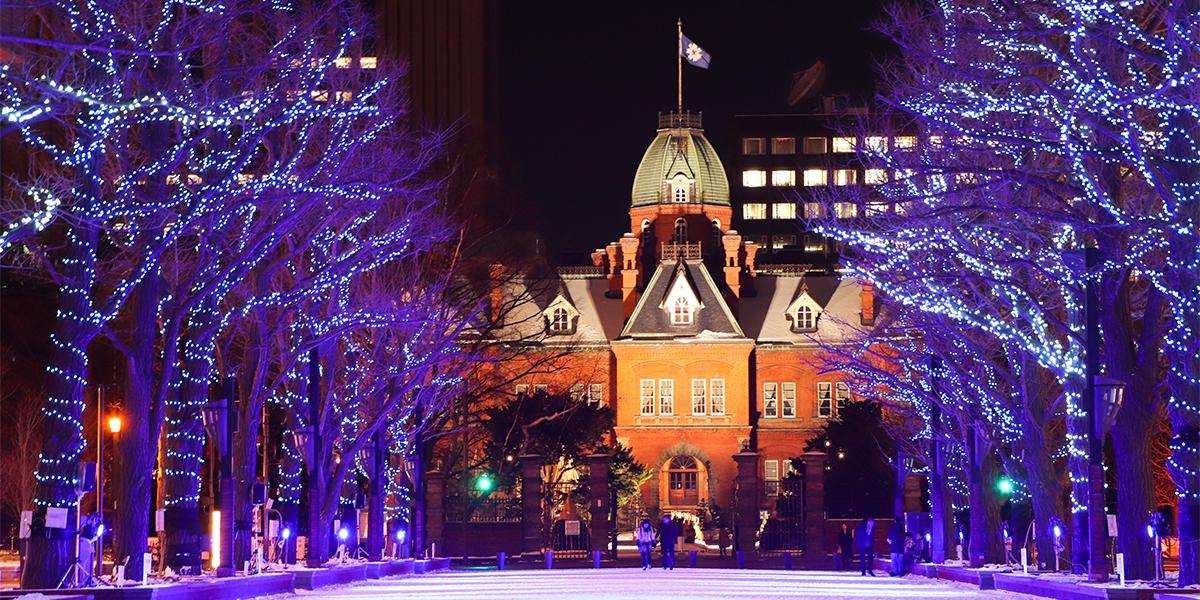 The 40th Sapporo White Illumination