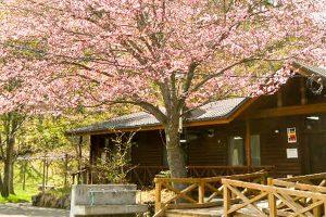 札幌市ふれあいの森
