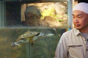 เรียนรู้สภาพแวดล้อมทางธรรมชาติของซัปโปโรจาก<br>สัตว์เลื้อยคลานและสัตว์ครึ่งบกครึ่งนํ้า นะโอยะ ฮอนดะ พนักงานดูแลสวนสัตว์มารุยามะ