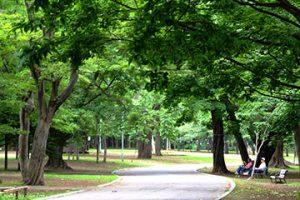 円山公園のすぐとなり