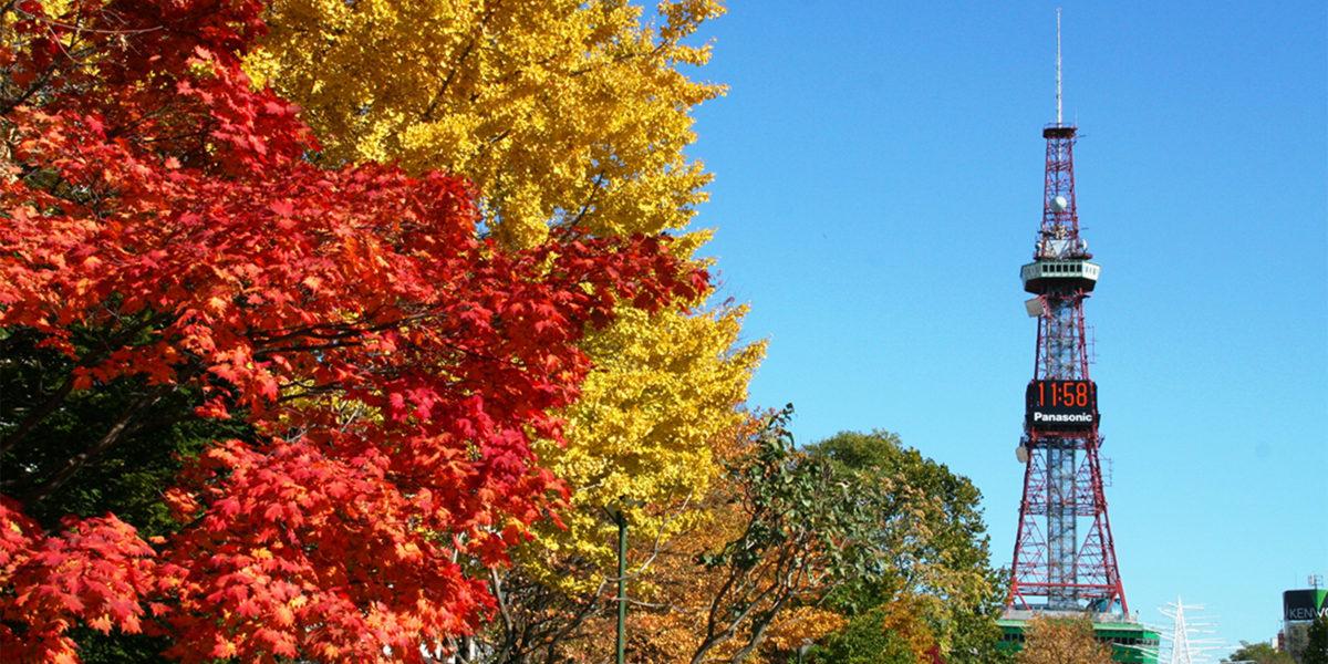 札幌で紅葉を楽しむなら!おすすめのスポット特集