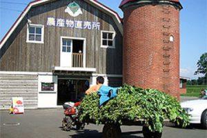 直売所 野菜科コーナー