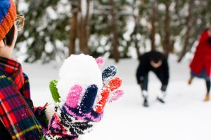 Winter in Sapporo (November to March)