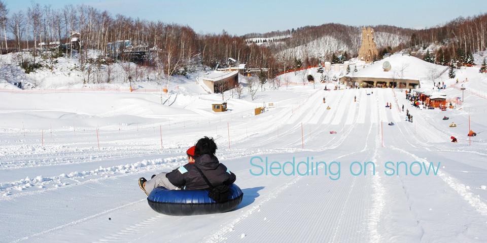 札幌の雪遊び、子どもも大人も旅行者も誰でも楽しめる。