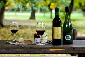 เพลิดเพลินกับการตระเวนดื่มไวน์ทั่วซัปโปโร